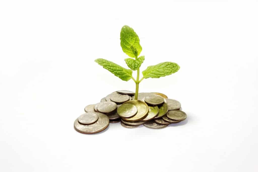 Một cái cây mọc trên một đống tiền lẻ.